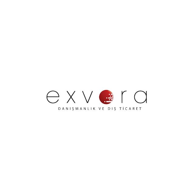 exvora danışmanlık