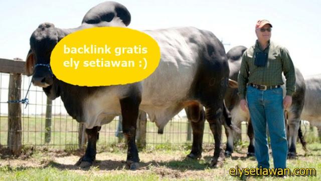 backlink gratis di blog  ely setiawan