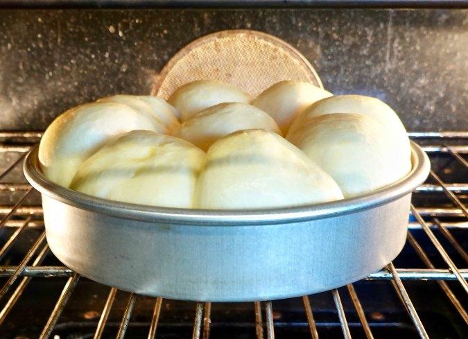 Japanese Hokkaido Milk Bread Rolls oven rise