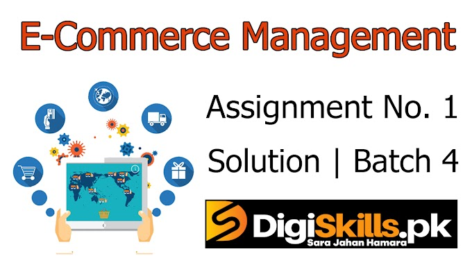 Digiskills E-Commerce Management | Exercise No. 3 Solution | Batch 4 | ECM101 Exercise No. 3 Solution | Study Planet