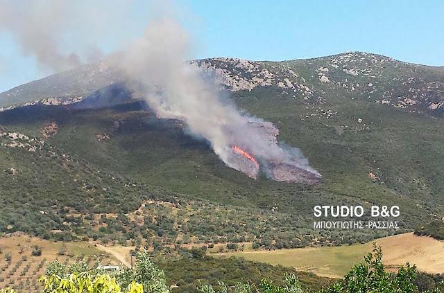 40 φωτιές μέσα σε ένα 24ωρο σε όλη την Ελλάδα