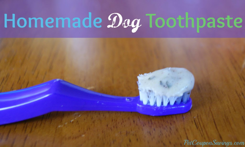 DIY And Crafts: Homemade Dog Toothpaste. This easy and ...
