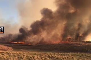 Incêndio atinge área de mata da cidade de Barro, no Cariri