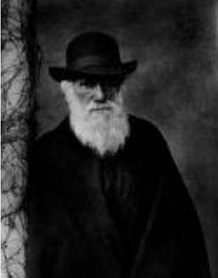 Darwinism and human life