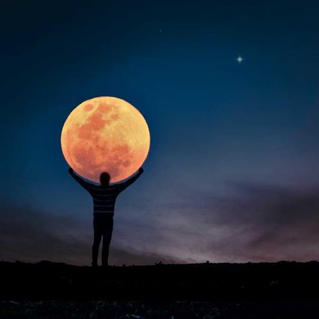 The Moon: An Insight Into Your Feelings