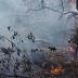 Brigadistas e Bombeiros lutam para conter o fogo na Terra Indígena Tembé da Reserva Alto Rio Guamá, com grandes focos em Santa Luzia do Pará
