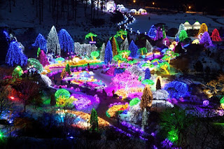 Description: Garden of the Morning Calm Lighting Festival jeanerooselinecom.jpg