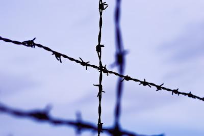 Membunuh Hitler Tanpa Alasan, Cerpen Etgar Keret