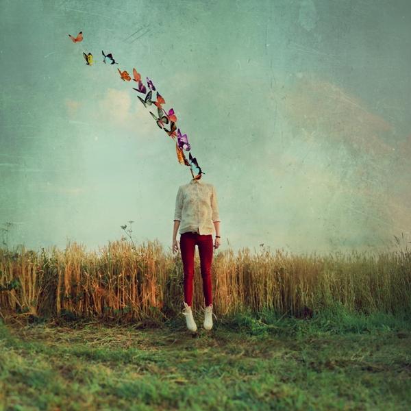 https://www.deviantart.com/flowerpottt/art/full-of-butterflies-391147758