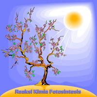 Reaksi Kimia Fotosintesis Yang Benar Pada Tumbuhan