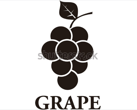 cartoon illustration grape