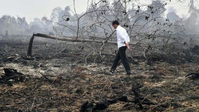 Jokowi Divonis Melawan Hukum Soal Polusi Udara, Pemerintah: Kami Tunggu Tinjauan KLHK
