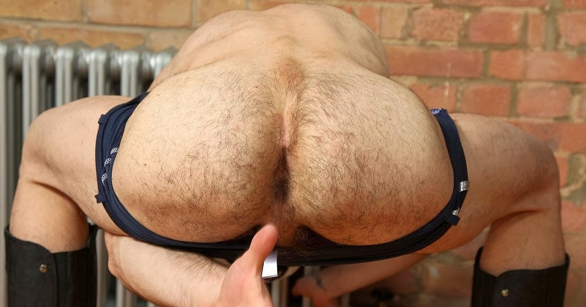hairy-men-ass-galleries-pussy