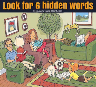 Look for 6 hidden words