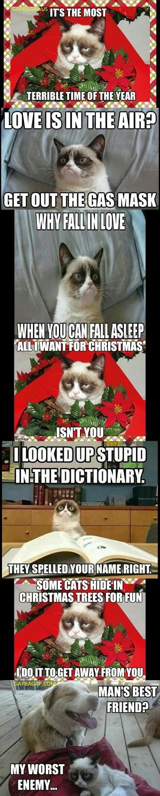 Christmas Memes Cats.Grumpy Cat Memes Christmas Grumpy Cat