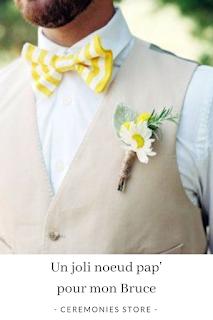 noeuds papillons marié  idées et inspirations blog mariage unjourmonprinceviendra26.com