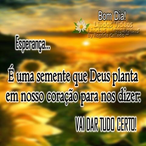 Esperança...  É uma semente que Deus planta  em nosso coração para nos dizer:  VAI DAR TUDO CERTO!  Bom Dia!
