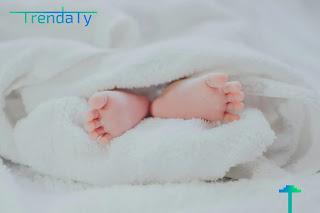 فوائد المكسرات للحامل والجنين