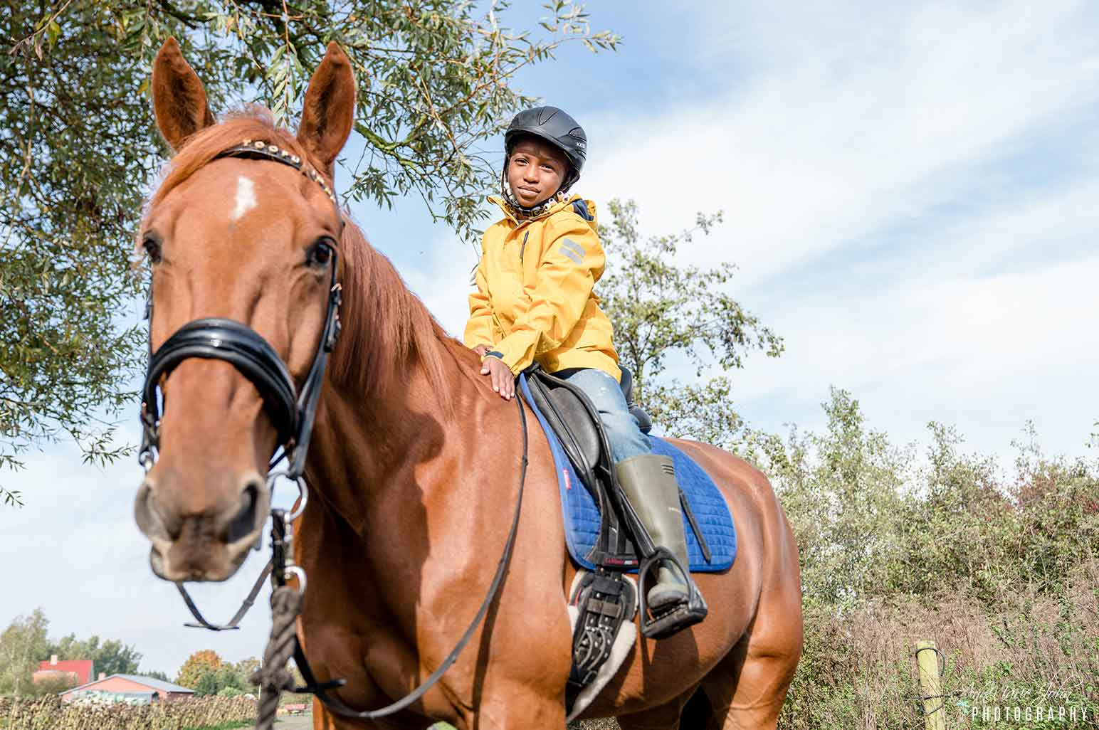 Why Horse-riding Is an Excellent Hobby for Anyone