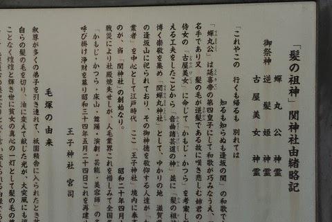東京の「関神社」に育毛の神様あり!?