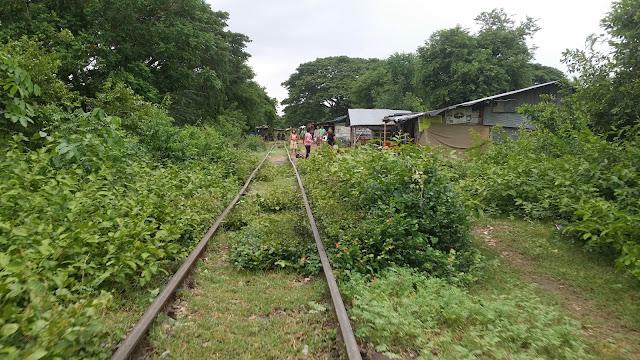 Final del trayecto en el tren de bambú
