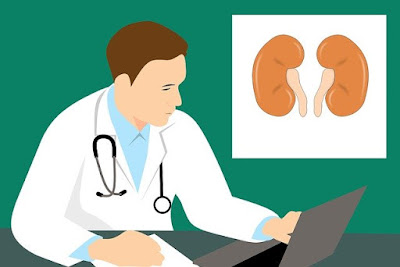 Kidney Position, Function and Characteristics of Early Stage Kidney Disease