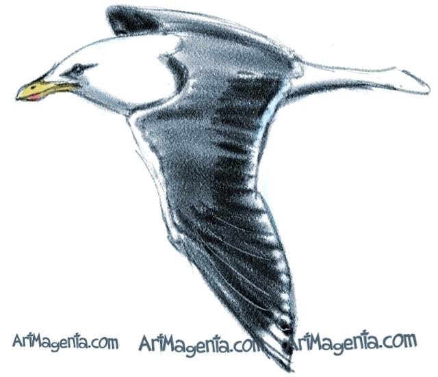 Lesser Black-backed Gull sketch painting. Bird art drawing by illustrator Artmagenta