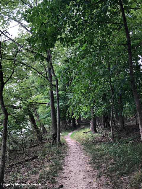 A natural trail beckons wanders into the forest on Smith's Island in Iowa.