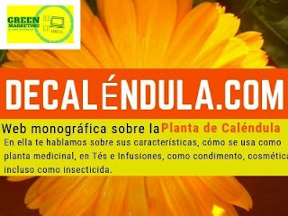 Calendula, plataforma de contenidos de ECO SEO Green Marketing