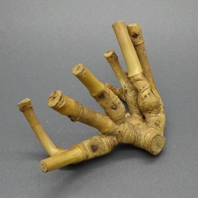 Bambu Pethuk dan Mimpi Ingin Kaya