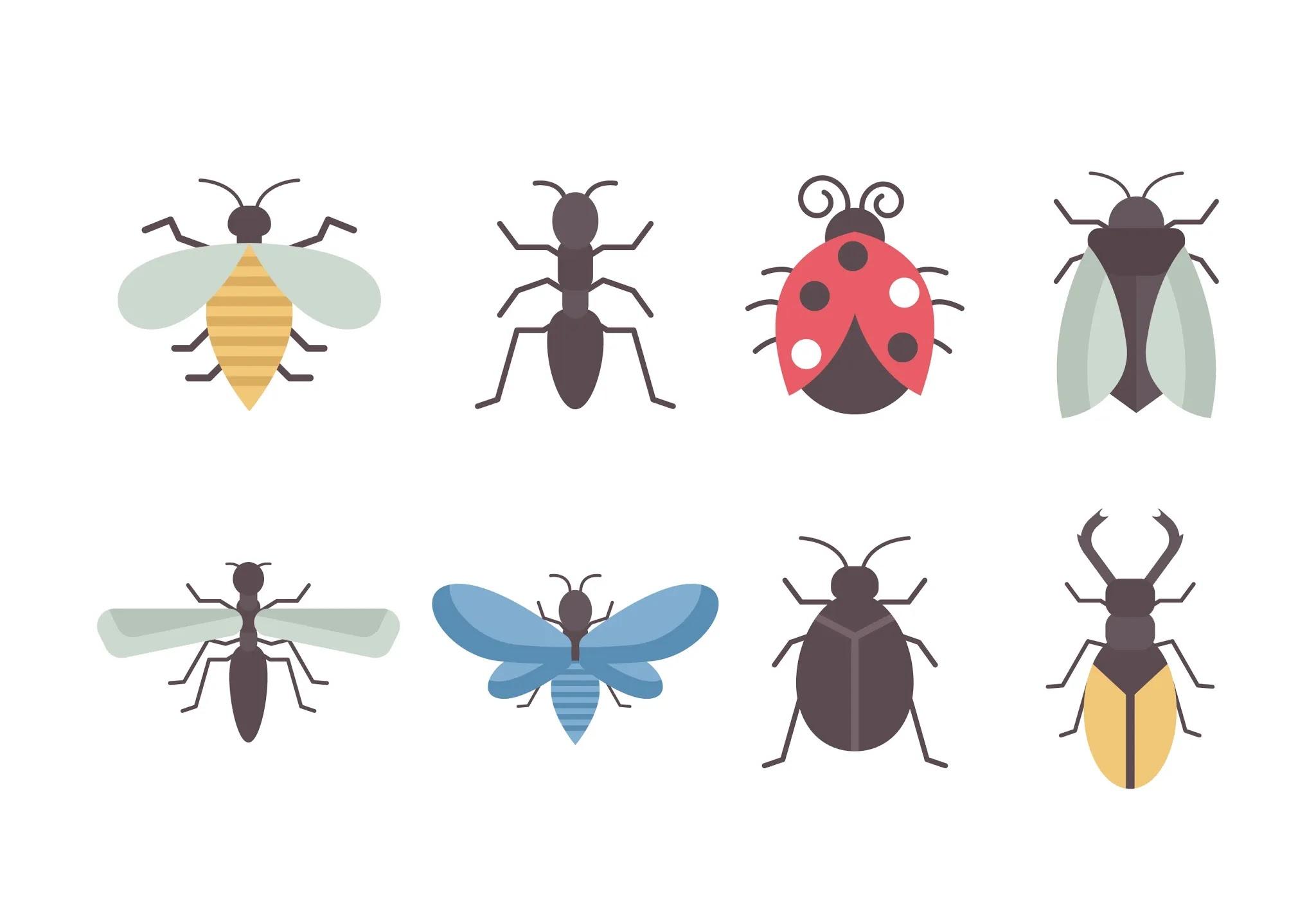 حشرة البق الدقيقي وأسباب أصابة النبات بها وطريقة علاجها