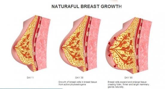 Natrual breast enlargment