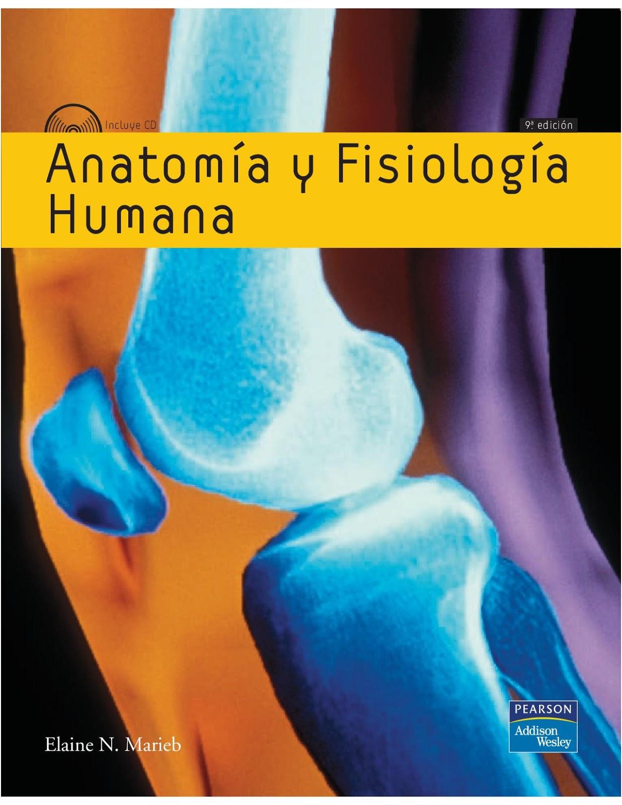 Bonito Saladino Anatomía Y Fisiología Cresta - Anatomía de Las ...
