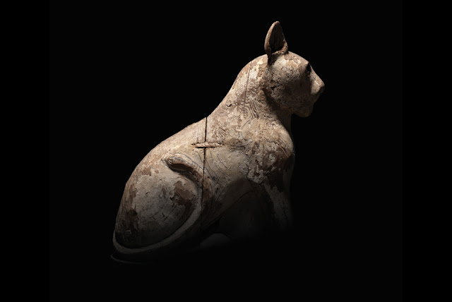 'Animal Mummies Revealed' at the World Museum in Liverpool, UK