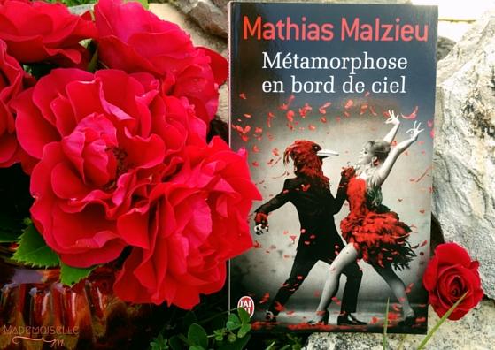 """Métamorphose en bord de ciel"" de Mathias Malzieu"