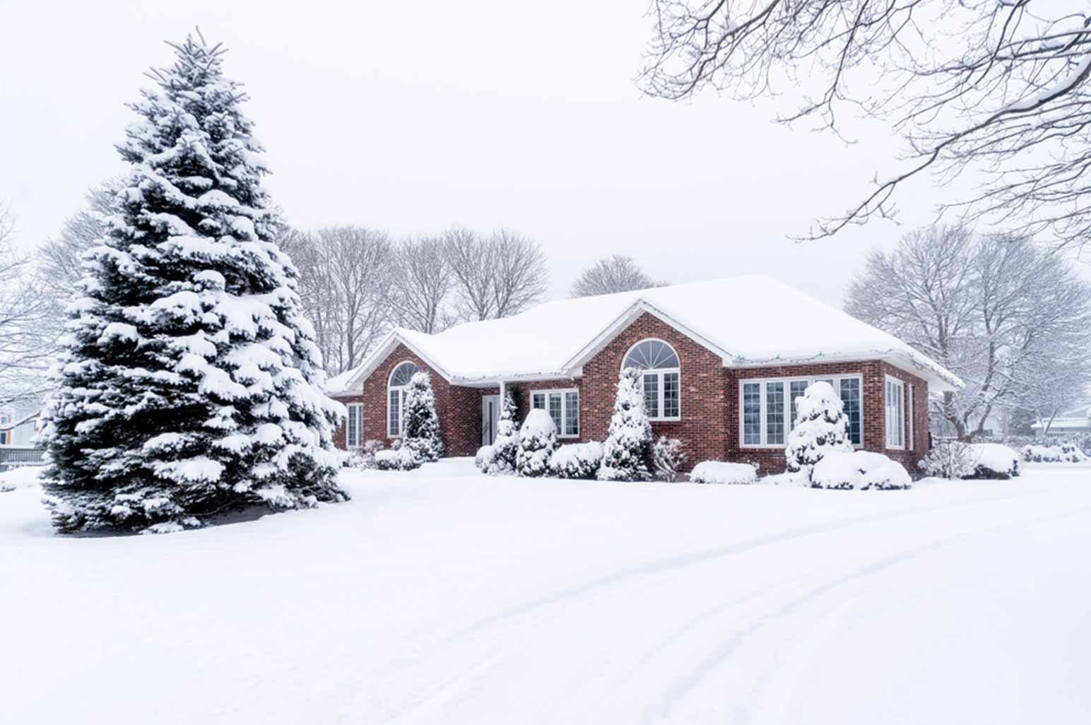 Restoring Your Yard After Winter - Snowfall