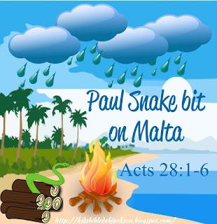 http://www.biblefunforkids.com/2015/05/paul-is-bit-by-snake-on-malta.html