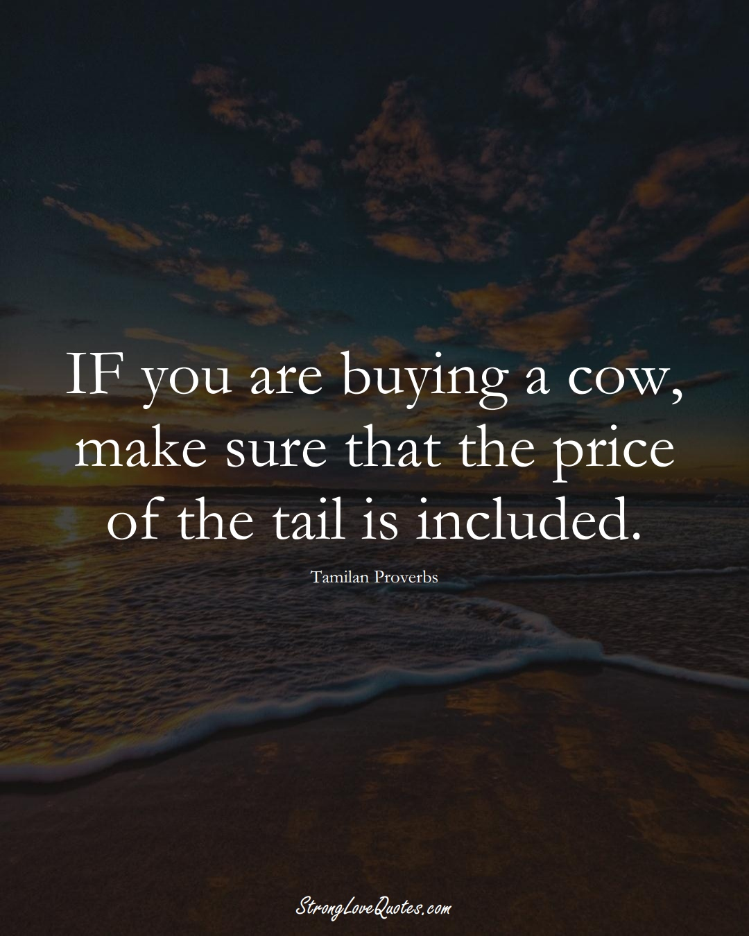 IF you are buying a cow, make sure that the price of the tail is included. (Tamilan Sayings);  #aVarietyofCulturesSayings
