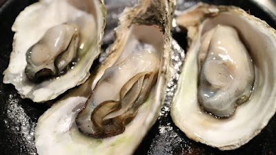 8 Foods That Ensures Your Hair Grow Faster, Oysters