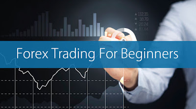The 5 Essential Guidelines to Forex Trading for Beginners