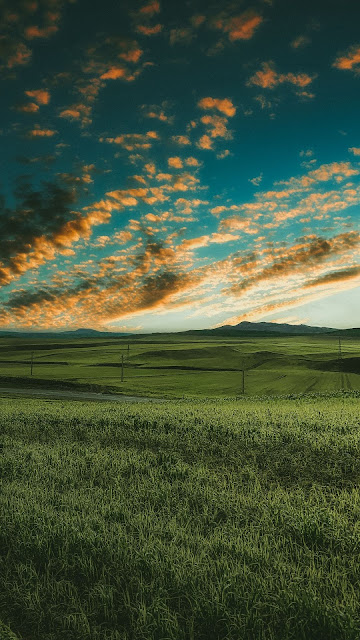 Grass field, road, clouds, sky