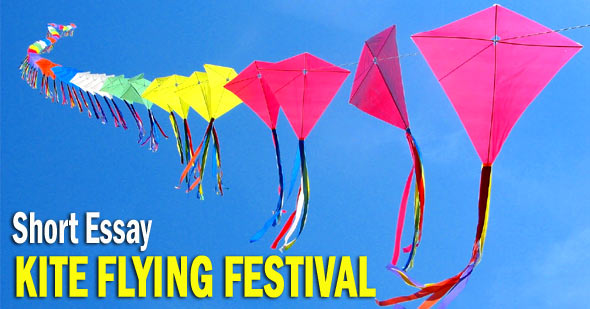 Kite Flying Festival in India Short Essay - 490 Words