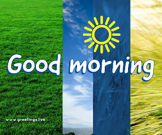 Diy good morning greetings from greetings Live