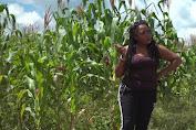 Akibat Pandemi Covid-19, Seorang Penyanyi Zimbabwe Beralih ke Pertanian untuk Cari Penghasilan