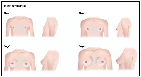 enormous nipples symptom