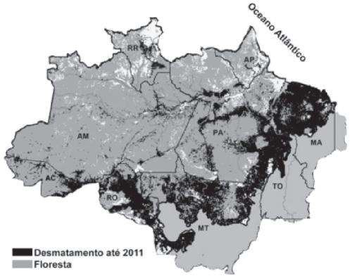 Uma alternativa de intervenção visando a solução para o problema evidenciado no mapa é a
