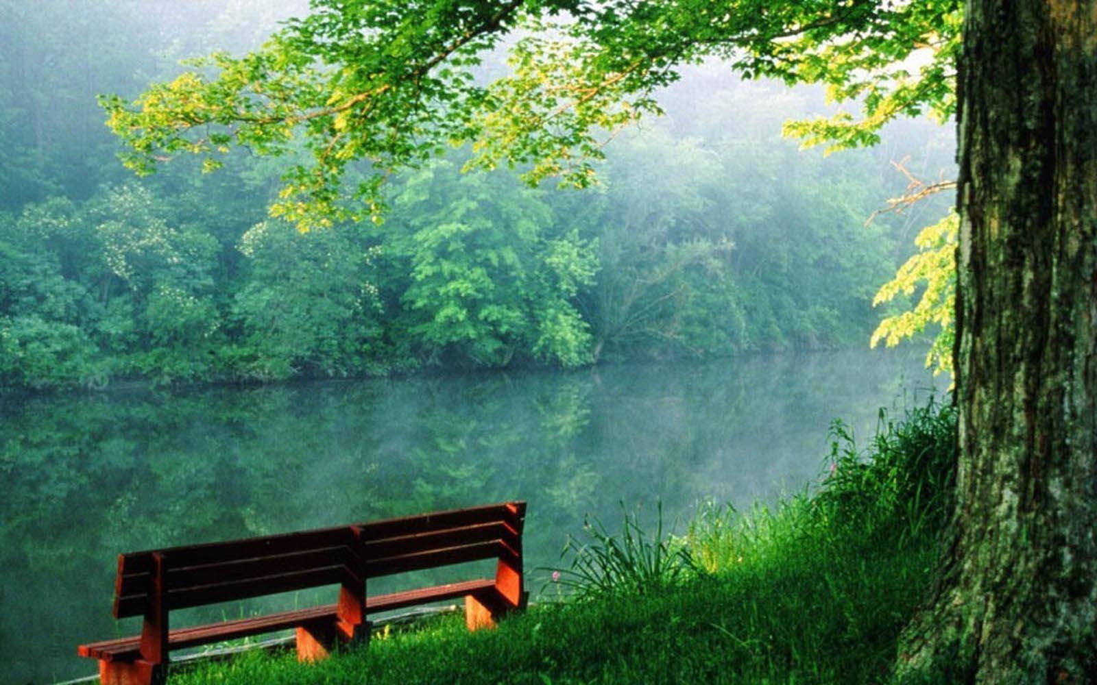 Desktop Wallpapers: Beautiful Nature Desktop Wallpapers