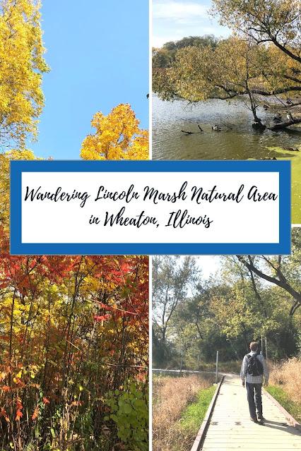 Lincoln Marsh Natural Area: A Habitat Restoration Success Story in Wheaton, Illinois