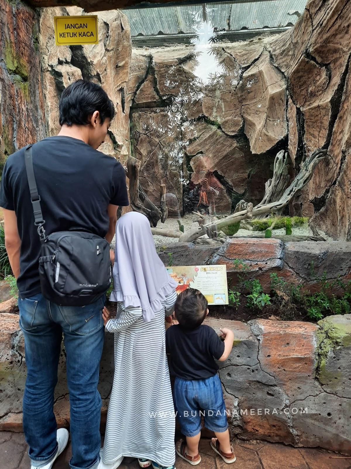 liburan ke kebun binatang Bandung, Bandung Zoo, wajah baru bonbin Bandung, manfaat berkunjung ke kebun binatang untuk anak