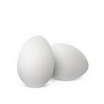 eggs in spanish